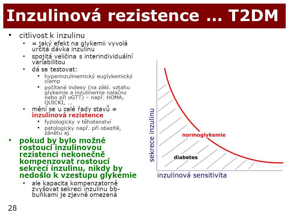 28 Inzulinová rezistence … T2DM citlivost k inzulinu = jaký efekt na glykemii vyvolá určitá dávka inzulinu spojitá veličina s interindividuální variab