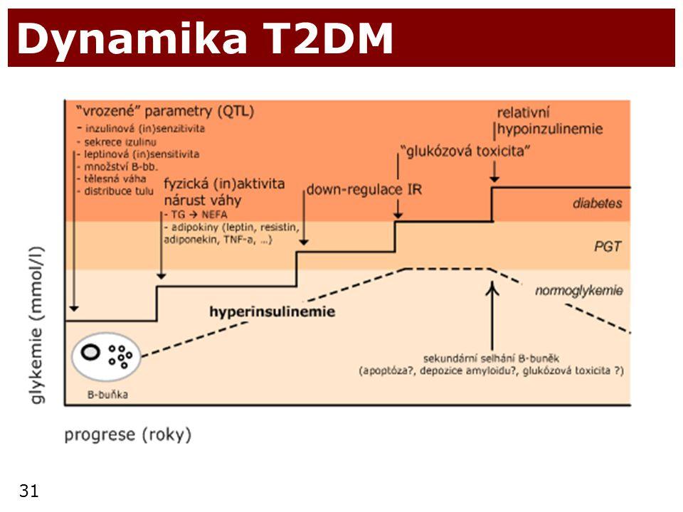31 Dynamika T2DM