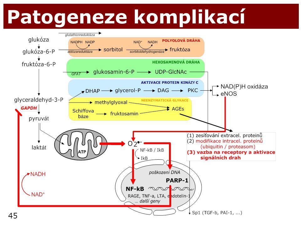 45 Patogeneze komplikací