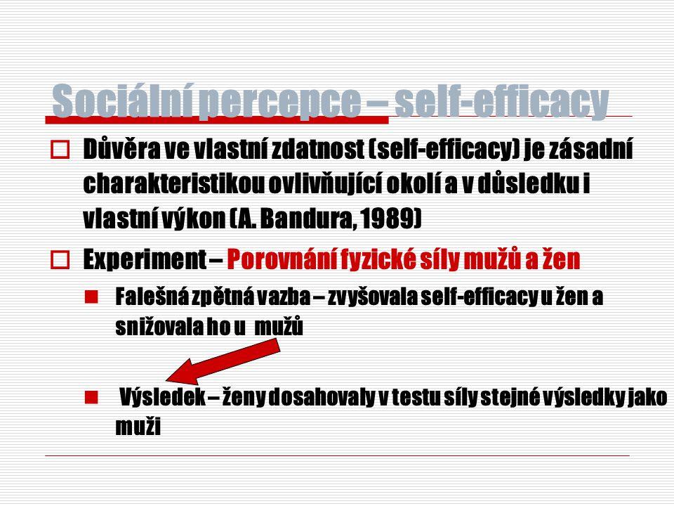 Sociální percepce – self-efficacy  Důvěra ve vlastní zdatnost (self-efficacy) je zásadní charakteristikou ovlivňující okolí a v důsledku i vlastní vý
