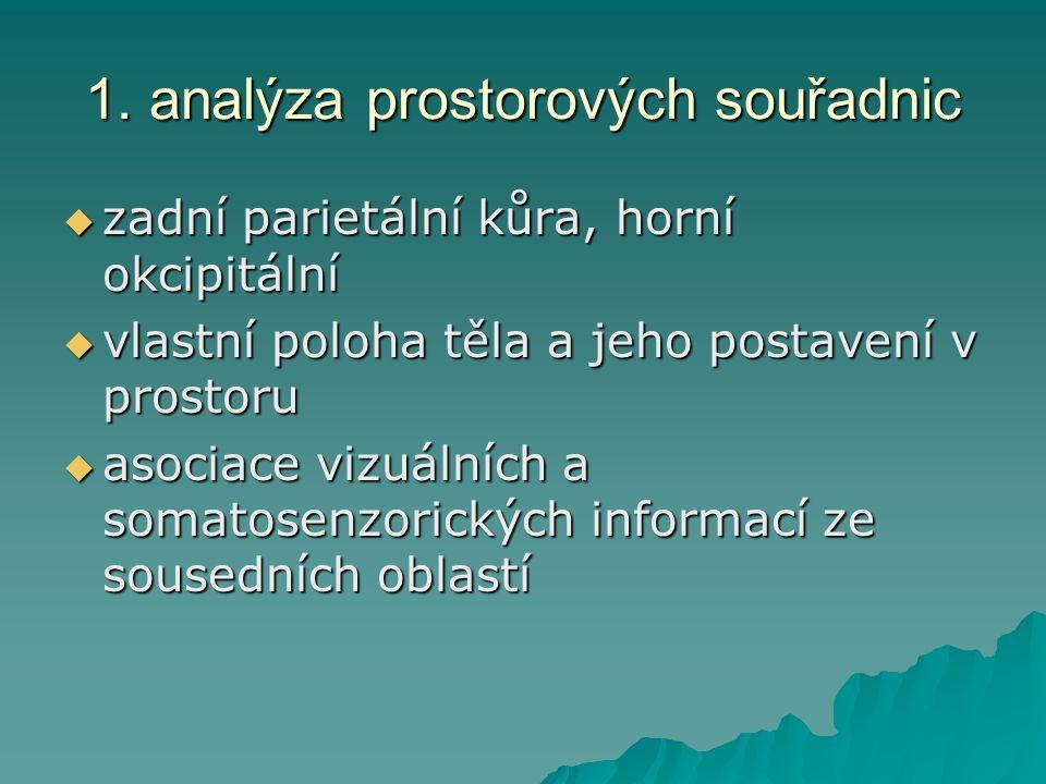 1. analýza prostorových souřadnic  zadní parietální kůra, horní okcipitální  vlastní poloha těla a jeho postavení v prostoru  asociace vizuálních a