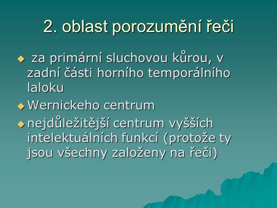 2. oblast porozumění řeči  za primární sluchovou kůrou, v zadní části horního temporálního laloku  Wernickeho centrum  nejdůležitější centrum vyšší