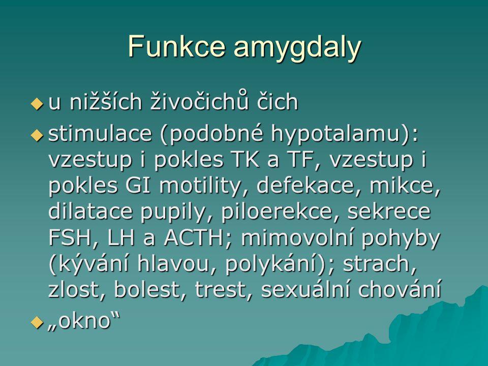 Funkce amygdaly  u nižších živočichů čich  stimulace (podobné hypotalamu): vzestup i pokles TK a TF, vzestup i pokles GI motility, defekace, mikce,