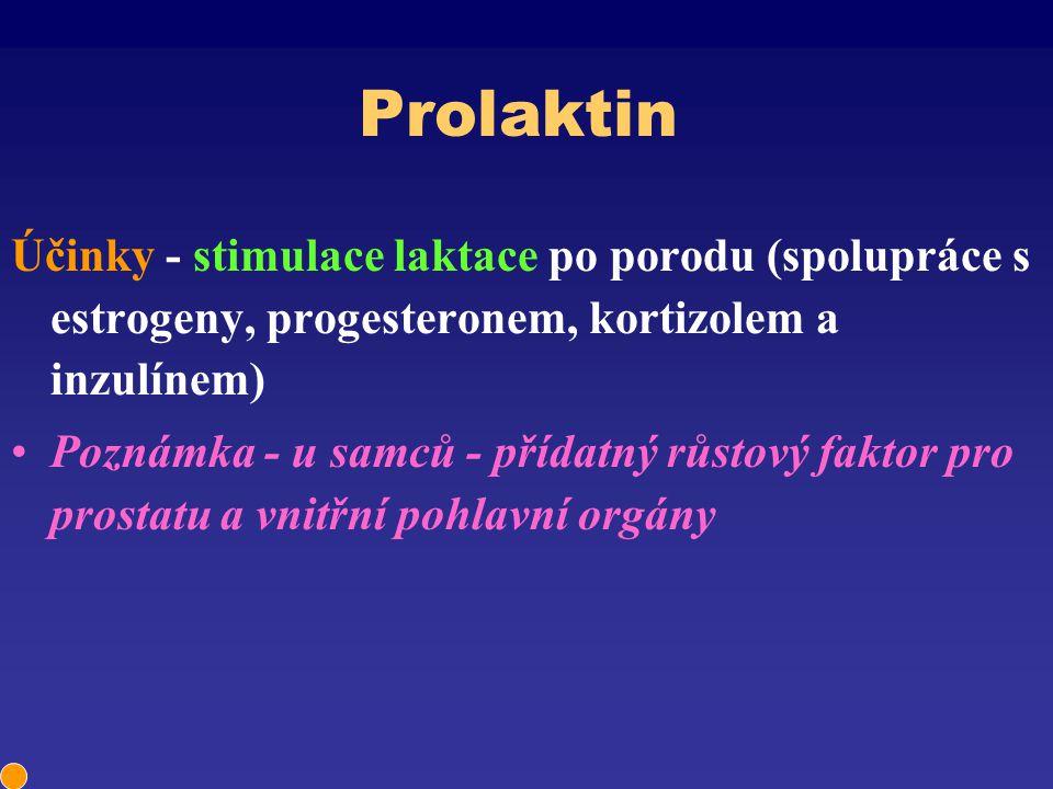 Prolaktin Účinky - stimulace laktace po porodu (spolupráce s estrogeny, progesteronem, kortizolem a inzulínem) Poznámka - u samců - přídatný růstový f