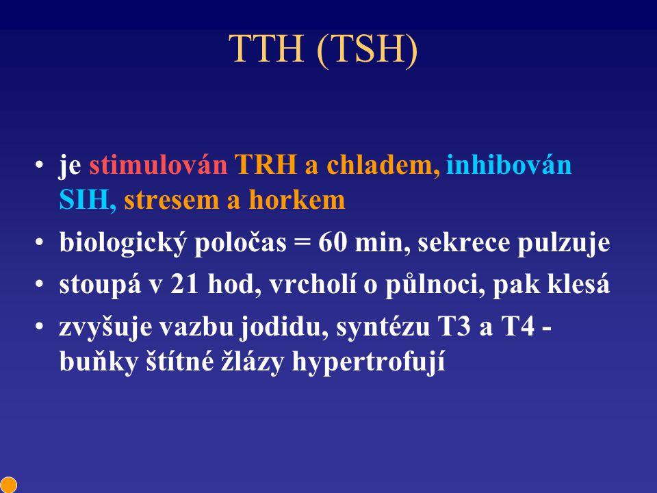 TTH (TSH) je stimulován TRH a chladem, inhibován SIH, stresem a horkem biologický poločas = 60 min, sekrece pulzuje stoupá v 21 hod, vrcholí o půlnoci