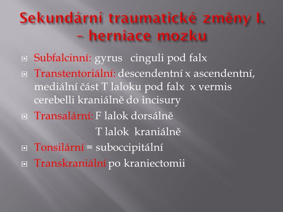  Subfalcinní: gyrus cinguli pod falx  Transtentoriální: descendentní x ascendentní, mediální část T laloku pod falx x vermis cerebelli kraniálně do incisury  Transalární: F lalok dorsálně T lalok kraniálně  Tonsilární = suboccipitální  Transkraniální po kraniectomii