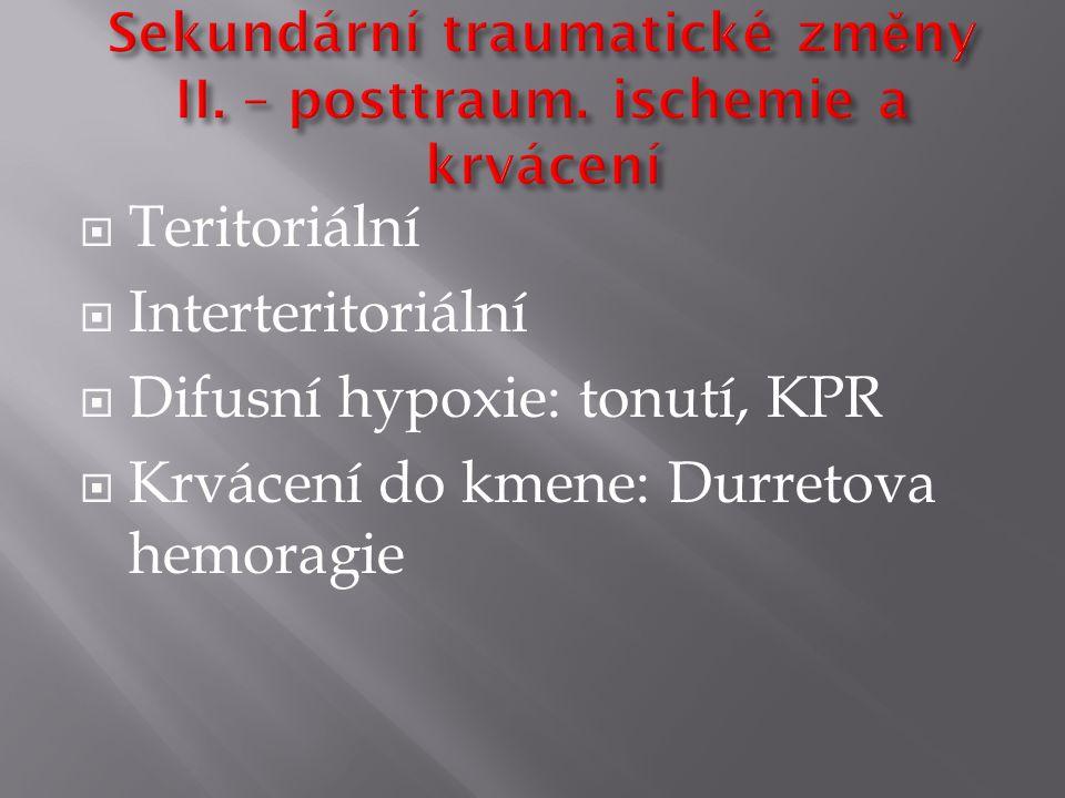  Teritoriální  Interteritoriální  Difusní hypoxie: tonutí, KPR  Krvácení do kmene: Durretova hemoragie