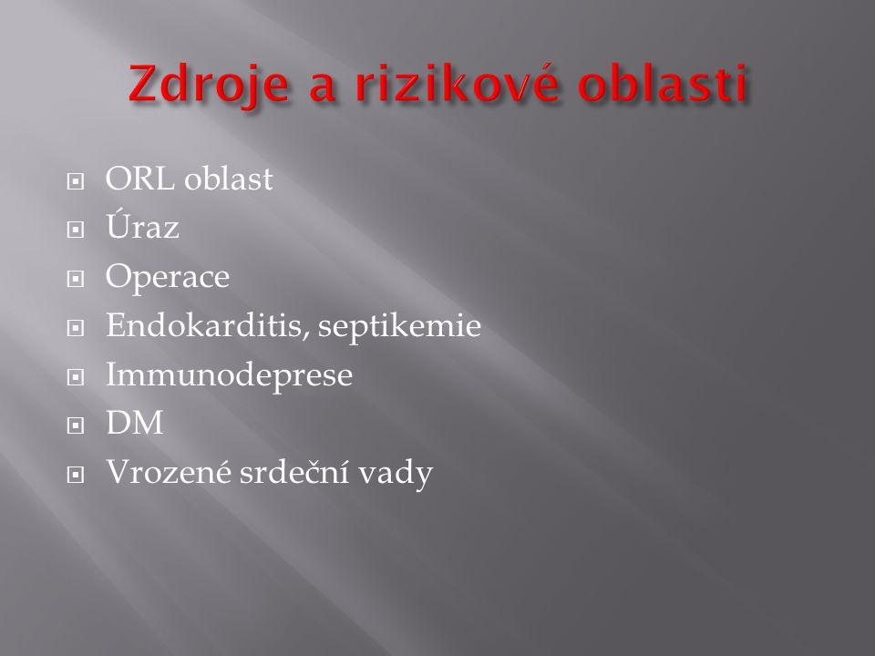  ORL oblast  Úraz  Operace  Endokarditis, septikemie  Immunodeprese  DM  Vrozené srdeční vady