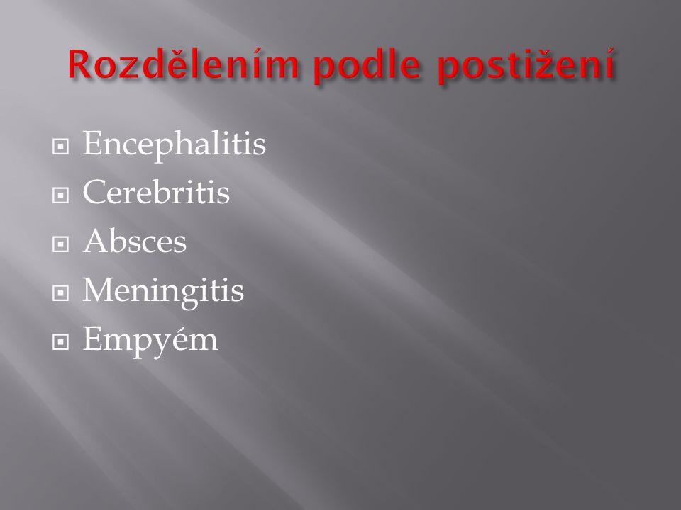  Encephalitis  Cerebritis  Absces  Meningitis  Empyém