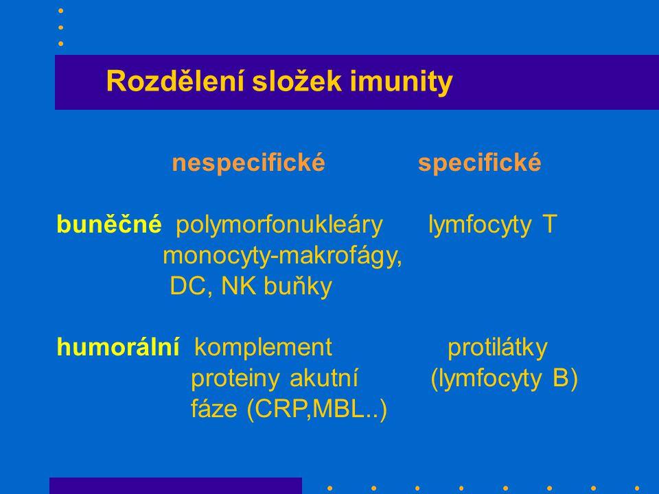 Rozdělení složek imunity nespecifické specifické buněčné polymorfonukleáry lymfocyty T monocyty-makrofágy, DC, NK buňky humorální komplement protilátky proteiny akutní (lymfocyty B) fáze (CRP,MBL..)