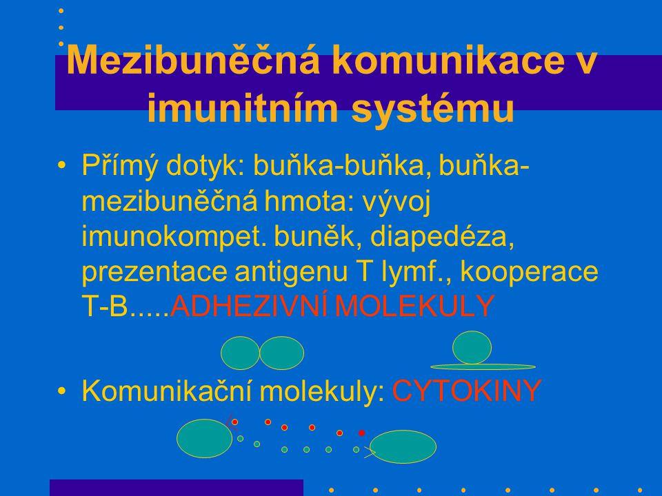 Mezibuněčná komunikace v imunitním systému Přímý dotyk: buňka-buňka, buňka- mezibuněčná hmota: vývoj imunokompet.