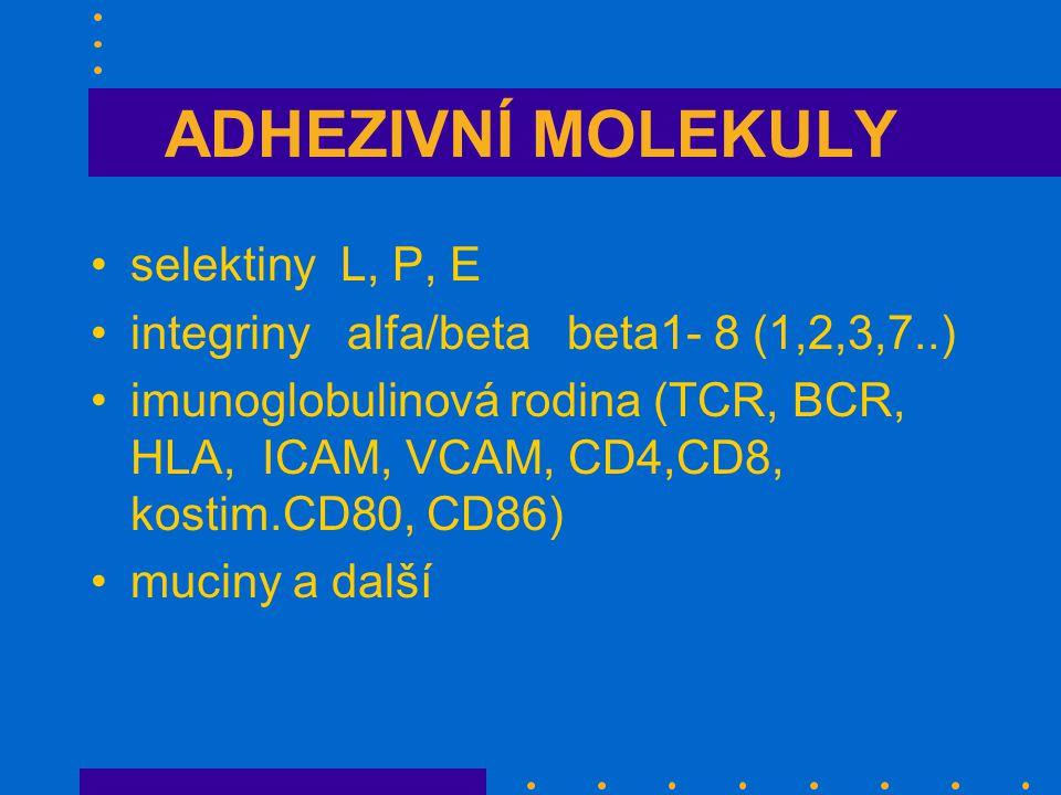 ADHEZIVNÍ MOLEKULY selektiny L, P, E integriny alfa/beta beta1- 8 (1,2,3,7..) imunoglobulinová rodina (TCR, BCR, HLA, ICAM, VCAM, CD4,CD8, kostim.CD80, CD86) muciny a další