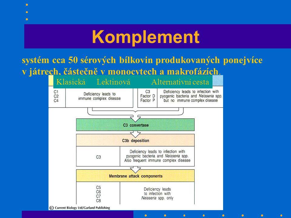 Komplement systém cca 50 sérových bílkovin produkovaných ponejvíce v játrech, částečně v monocytech a makrofázích.