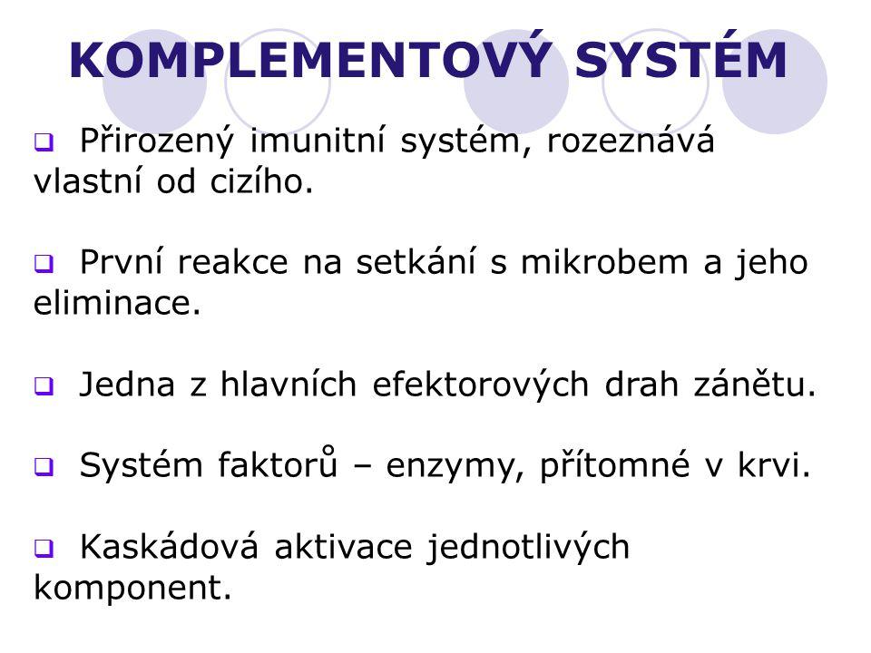 KOMPLEMENTOVÝ SYSTÉM  Přirozený imunitní systém, rozeznává vlastní od cizího.  První reakce na setkání s mikrobem a jeho eliminace.  Jedna z hlavní