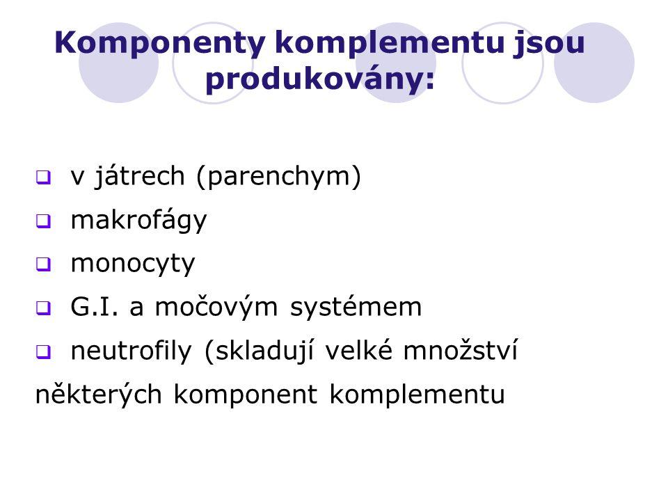 Komponenty komplementu jsou produkovány:  v játrech (parenchym)  makrofágy  monocyty  G.I. a močovým systémem  neutrofily (skladují velké množstv