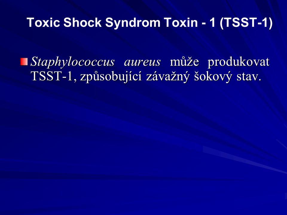 Toxic Shock Syndrom Toxin - 1 (TSST-1) Staphylococcus aureus může produkovat TSST-1, způsobující závažný šokový stav.