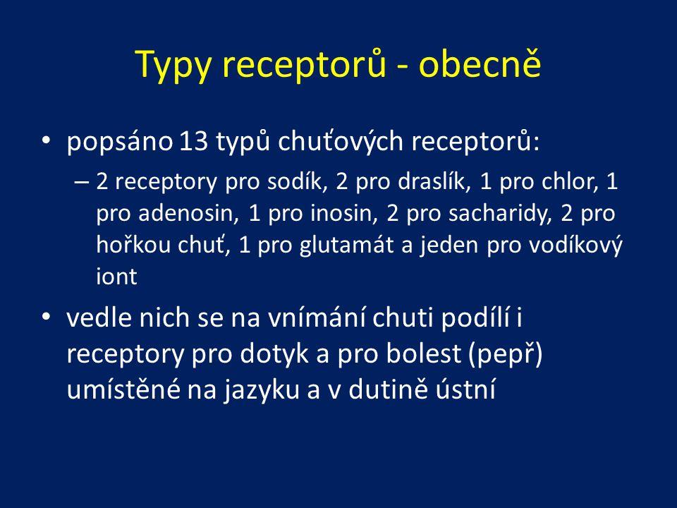 Typy receptorů - obecně popsáno 13 typů chuťových receptorů: – 2 receptory pro sodík, 2 pro draslík, 1 pro chlor, 1 pro adenosin, 1 pro inosin, 2 pro