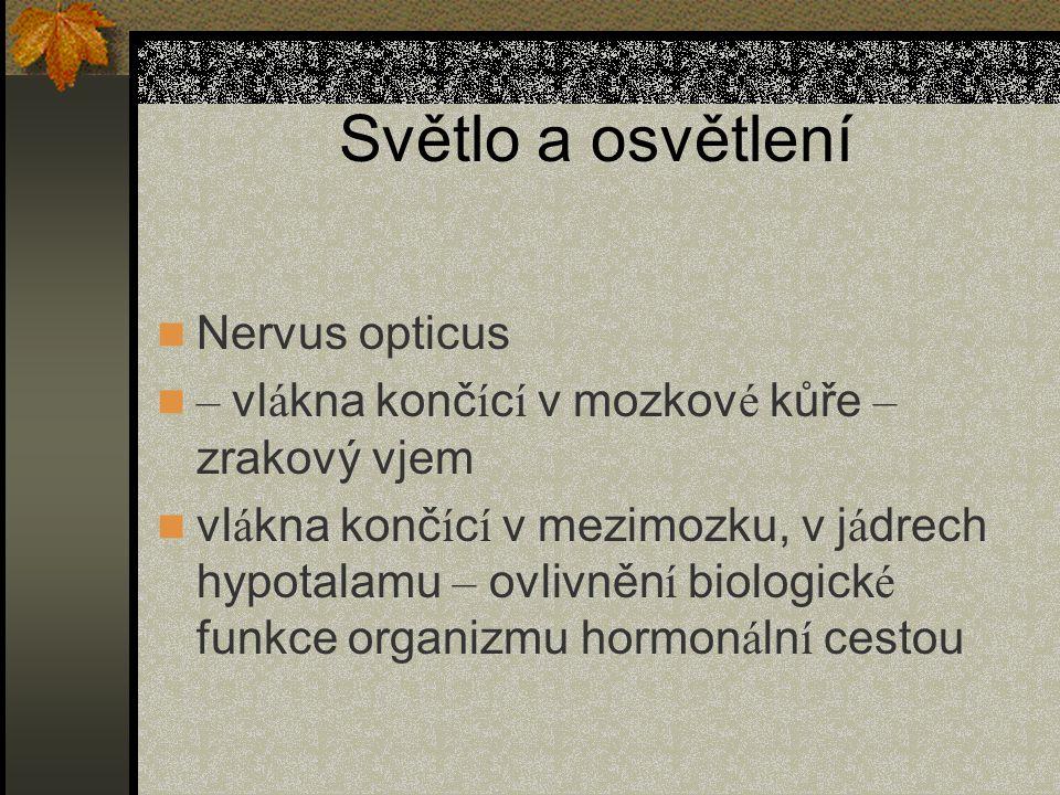 Světlo a osvětlení Nervus opticus – vl á kna konč í c í v mozkov é kůře – zrakový vjem vl á kna konč í c í v mezimozku, v j á drech hypotalamu – ovlivněn í biologick é funkce organizmu hormon á ln í cestou
