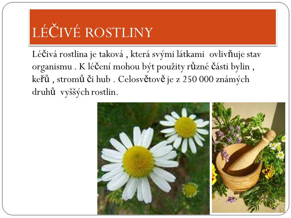 Lé č ivá rostlina je taková, která svými látkami ovliv ň uje stav organismu.