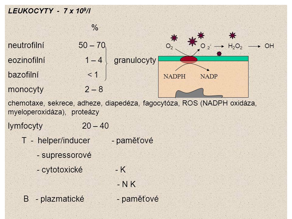 LEUKOCYTY - 7 x 10 9 /l % neutrofilní 50 – 70 O 2 O 2 - H 2 O 2 OH eozinofilní 1 – 4 granulocyty bazofilní < 1 monocyty 2 – 8 chemotaxe, sekrece, adhe