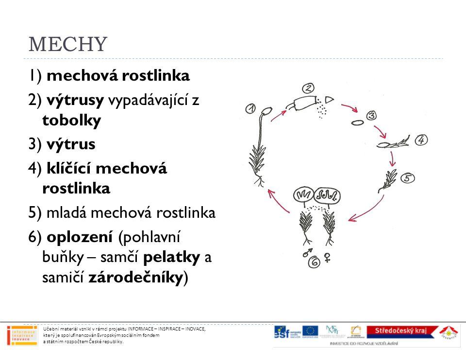 MECHY 1) mechová rostlinka 2) výtrusy vypadávající z tobolky 3) výtrus 4) klíčící mechová rostlinka 5) mladá mechová rostlinka 6) oplození (pohlavní buňky – samčí pelatky a samičí zárodečníky) Učební materiál vznikl v rámci projektu INFORMACE – INSPIRACE – INOVACE, který je spolufinancován Evropským sociálním fondem a státním rozpočtem České republiky.
