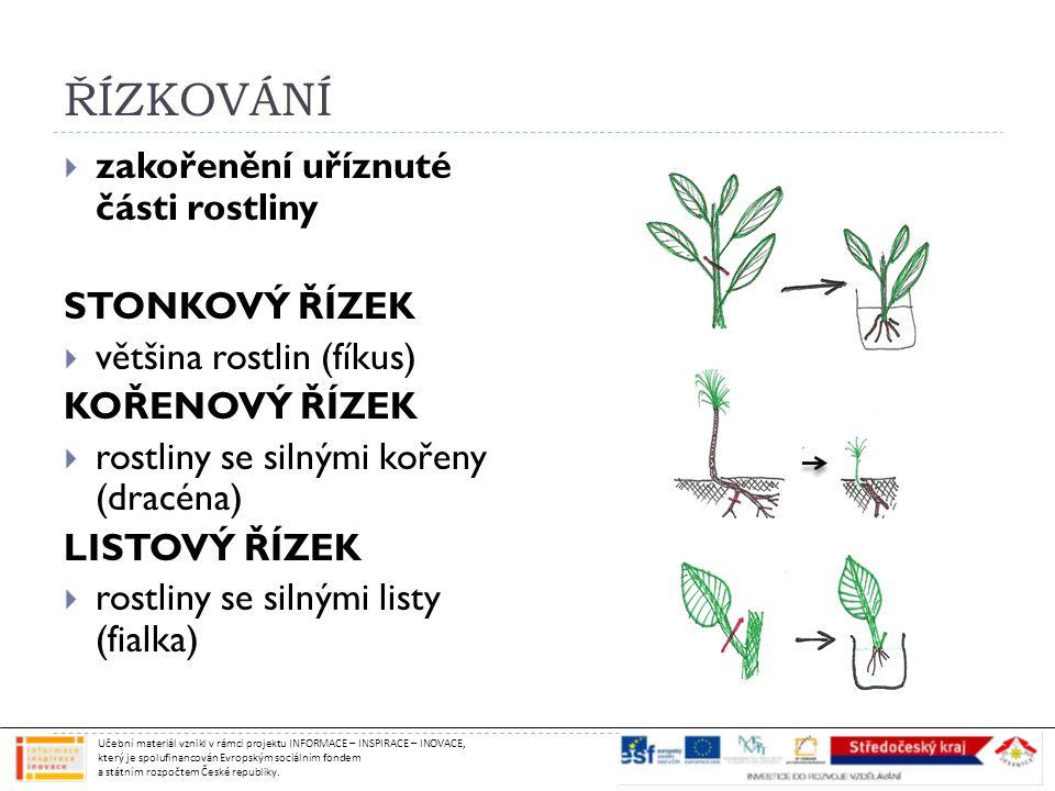 ŘÍZKOVÁNÍ  zakořenění uříznuté části rostliny STONKOVÝ ŘÍZEK  většina rostlin (fíkus) KOŘENOVÝ ŘÍZEK  rostliny se silnými kořeny (dracéna) LISTOVÝ ŘÍZEK  rostliny se silnými listy (fialka) Učební materiál vznikl v rámci projektu INFORMACE – INSPIRACE – INOVACE, který je spolufinancován Evropským sociálním fondem a státním rozpočtem České republiky.