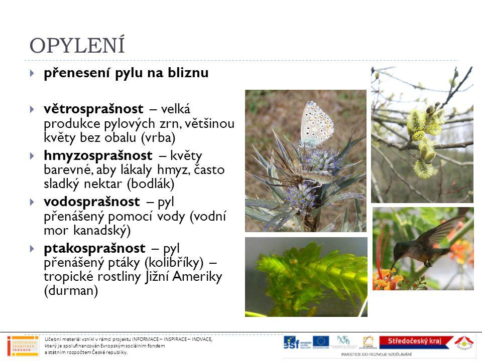 OPYLENÍ  přenesení pylu na bliznu  větrosprašnost – velká produkce pylových zrn, většinou květy bez obalu (vrba)  hmyzosprašnost – květy barevné, aby lákaly hmyz, často sladký nektar (bodlák)  vodosprašnost – pyl přenášený pomocí vody (vodní mor kanadský)  ptakosprašnost – pyl přenášený ptáky (kolibříky) – tropické rostliny Jižní Ameriky (durman) Učební materiál vznikl v rámci projektu INFORMACE – INSPIRACE – INOVACE, který je spolufinancován Evropským sociálním fondem a státním rozpočtem České republiky.