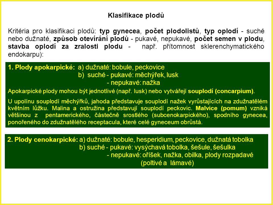 Klasifikace plodů Kritéria pro klasifikaci plodů: typ gynecea, počet plodolistů, typ oplodí - suché nebo dužnaté, způsob otevírání plodů - pukavé, nep