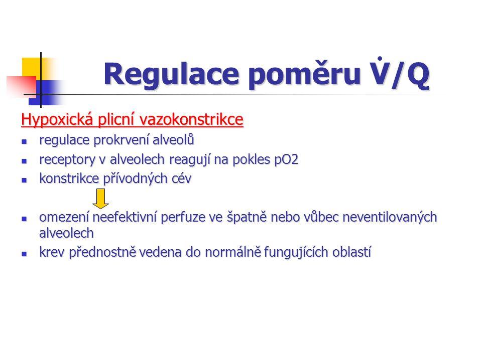 Regulace poměru V/Q Hypoxická plicní vazokonstrikce regulace prokrvení alveolů regulace prokrvení alveolů receptory v alveolech reagují na pokles pO2 receptory v alveolech reagují na pokles pO2 konstrikce přívodných cév konstrikce přívodných cév omezení neefektivní perfuze ve špatně nebo vůbec neventilovaných alveolech omezení neefektivní perfuze ve špatně nebo vůbec neventilovaných alveolech krev přednostně vedena do normálně fungujících oblastí krev přednostně vedena do normálně fungujících oblastí