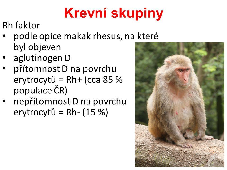 Rh faktor podle opice makak rhesus, na které byl objeven aglutinogen D přítomnost D na povrchu erytrocytů = Rh+ (cca 85 % populace ČR) nepřítomnost D