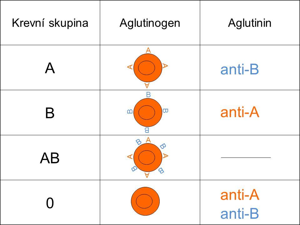 Krevní skupinaAglutinogenAglutinin A B AB 0 A A A A B B B B A A A A B B B B anti-B anti-A anti-B