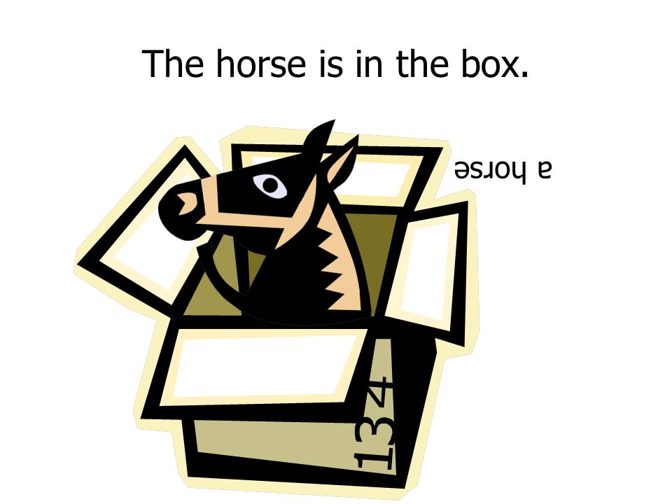 The horse is in the box. a horse