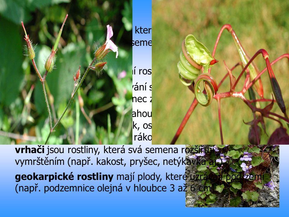Barochory jsou rostliny, které nemají žádná zařízení a přizpůsobení k rozšiřování semen Autochorie je rozšiřování rostlin vlastními silami ukladači oh