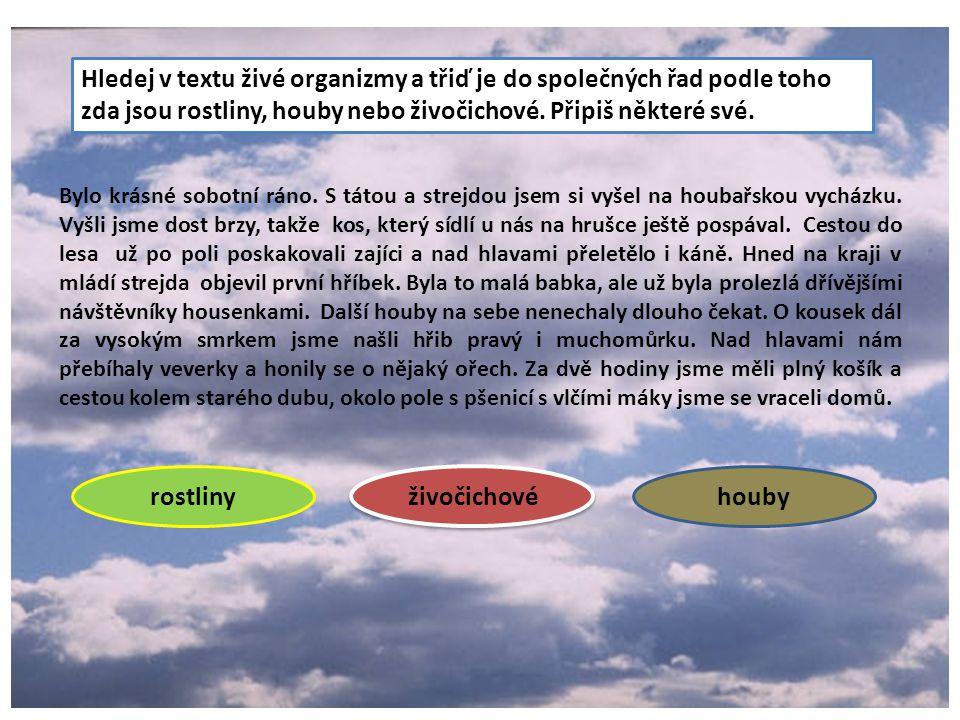 Hledej v textu živé organizmy a třiď je do společných řad podle toho zda jsou rostliny, houby nebo živočichové. Připiš některé své. Bylo krásné sobotn