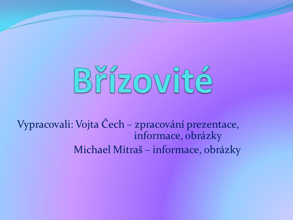 Vypracovali: Vojta Čech – zpracování prezentace,..