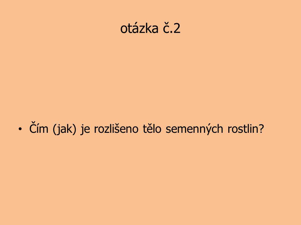 otázka č.2 Čím (jak) je rozlišeno tělo semenných rostlin?
