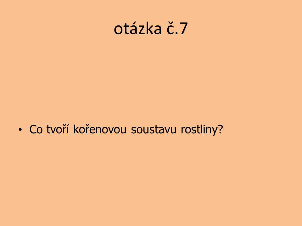 otázka č.7 Co tvoří kořenovou soustavu rostliny?