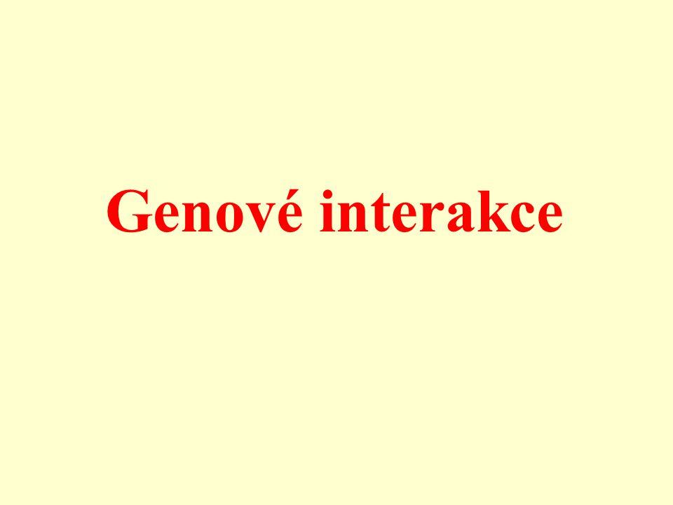 Gen Znak Působení genů