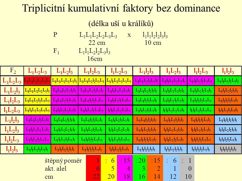 (délka uší u králíků) P L 1 L 1 L 2 L 2 L 3 L 3 x l 1 l 1 l 2 l 2 l 3 l 3 22 cm 10 cm F 1 L 1 l 1 L 2 l 2 L 3 l 3 16cm F2F2 1 6 22 20 3 16 15 4 18 1 0