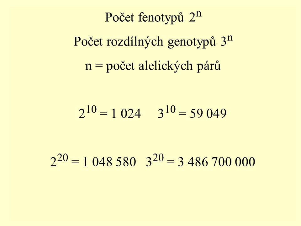 Počet fenotypů 2 n Počet rozdílných genotypů 3 n n = počet alelických párů 2 10 = 1 024 3 10 = 59 049 2 20 = 1 048 580 3 20 = 3 486 700 000