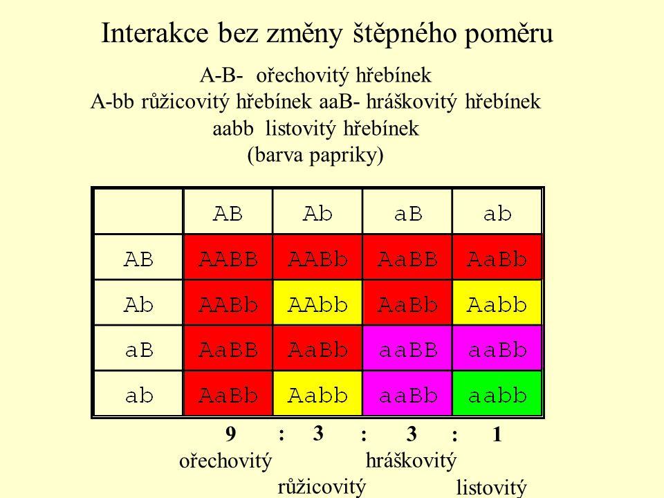 A-B- ořechovitý hřebínek A-bb růžicovitý hřebínek aaB- hráškovitý hřebínek aabb listovitý hřebínek (barva papriky) 9 ořechovitý : 3 růžicovitý : 3 hrá