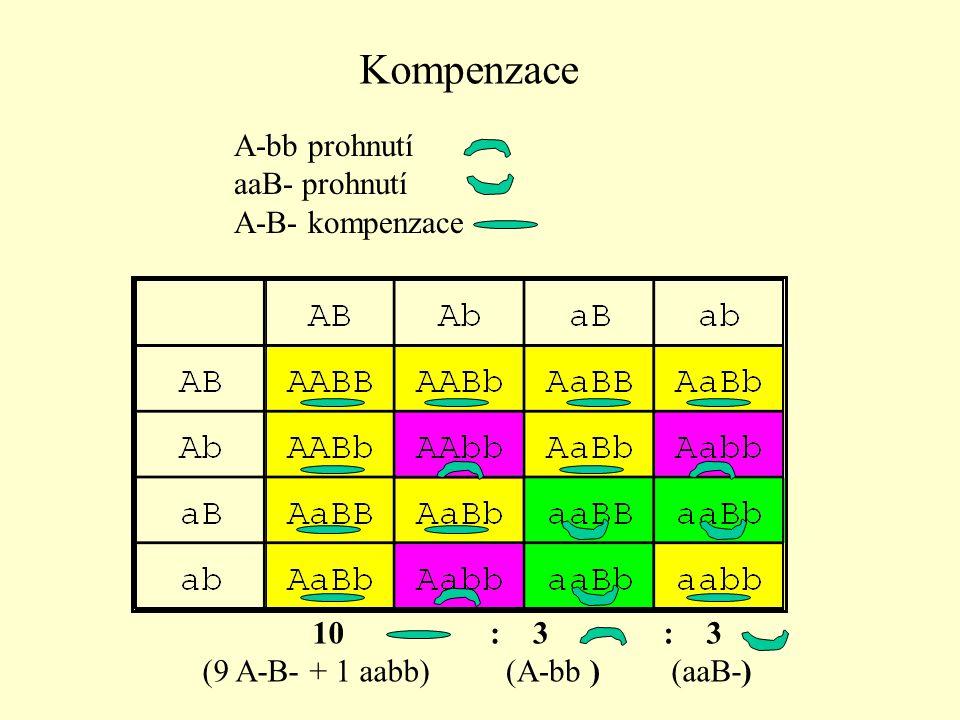 A červená, a bílá barva peří B (I) inhibitor, B  A 13 bílá (9 A-B- + 3 aaB- + 1 aabb) : 3 červená (A-bb) Inhibice