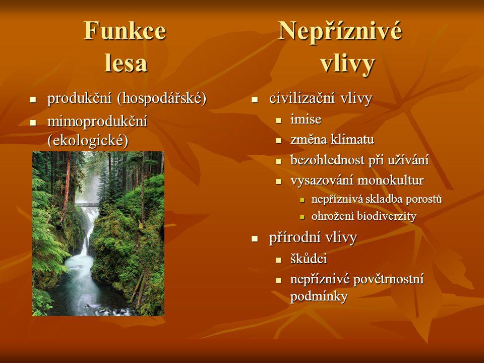 Funkce Nepříznivé lesavlivy Funkce Nepříznivé lesavlivy produkční (hospodářské) produkční (hospodářské) mimoprodukční (ekologické) mimoprodukční (ekol