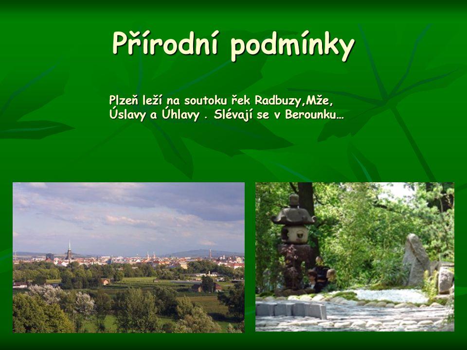 Přírodní podmínky Plzeň leží na soutoku řek Radbuzy,Mže, Úslavy a Úhlavy. Slévají se v Berounku…