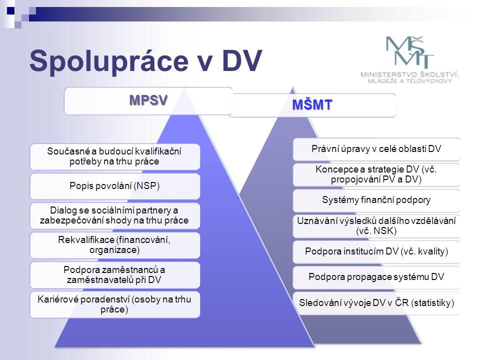 Spolupráce v DV MŠMT Právní úpravy v celé oblasti DV Koncepce a strategie DV (vč. propojování PV a DV) Systémy finanční podpory Uznávání výsledků dalš