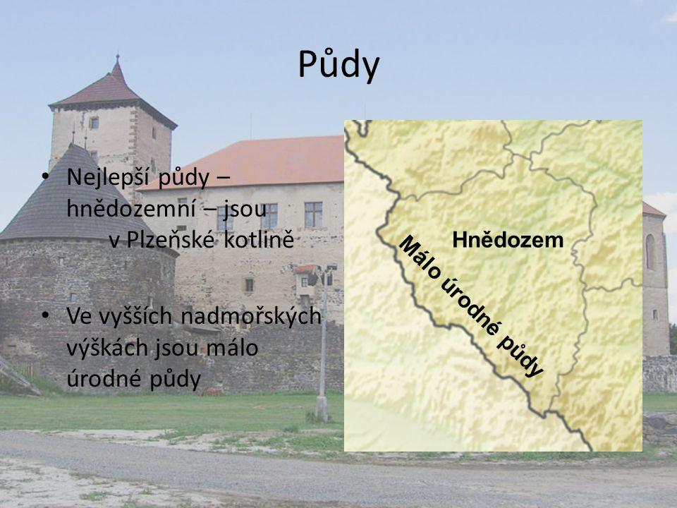 Půdy Nejlepší půdy – hnědozemní – jsou v Plzeňské kotlině Ve vyšších nadmořských výškách jsou málo úrodné půdy Hnědozem Málo úrodné půdy