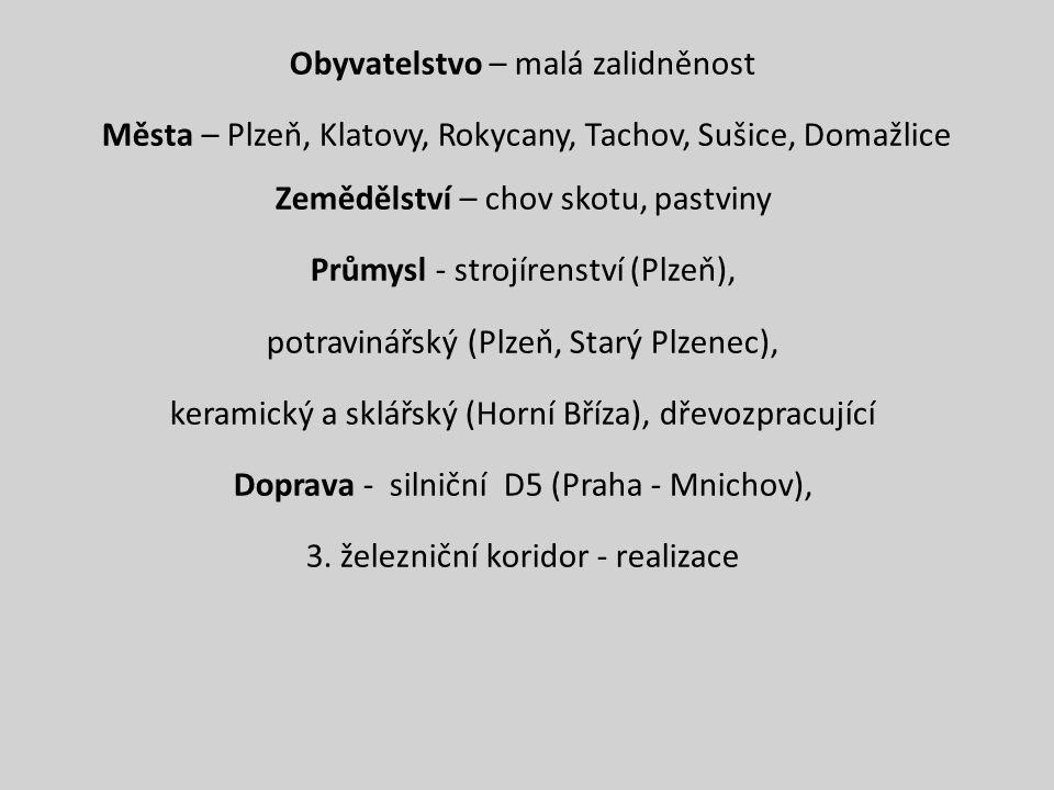 Obyvatelstvo – malá zalidněnost Města – Plzeň, Klatovy, Rokycany, Tachov, Sušice, Domažlice Zemědělství – chov skotu, pastviny Průmysl - strojírenství (Plzeň), potravinářský (Plzeň, Starý Plzenec), keramický a sklářský (Horní Bříza), dřevozpracující Doprava - silniční D5 (Praha - Mnichov), 3.