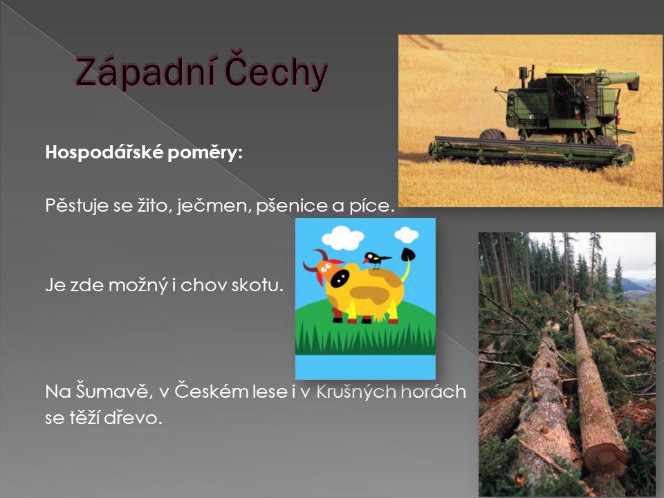 Hospodářské poměry: Pěstuje se žito, ječmen, pšenice a píce.