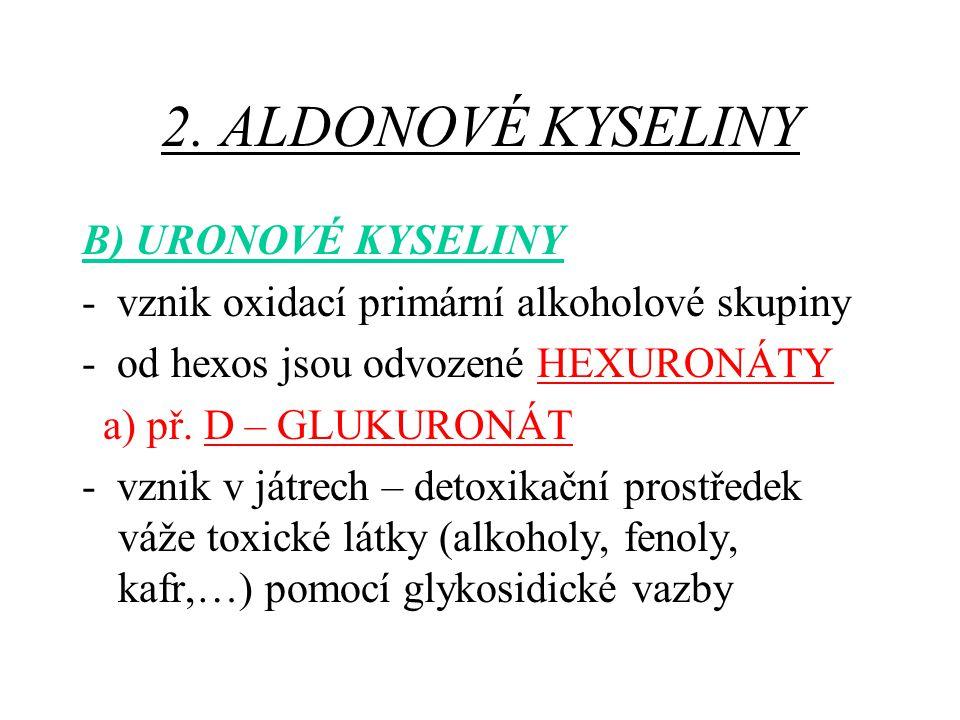2. ALDONOVÉ KYSELINY B) URONOVÉ KYSELINY - vznik oxidací primární alkoholové skupiny - od hexos jsou odvozené HEXURONÁTY a) př. D – GLUKURONÁT - vznik