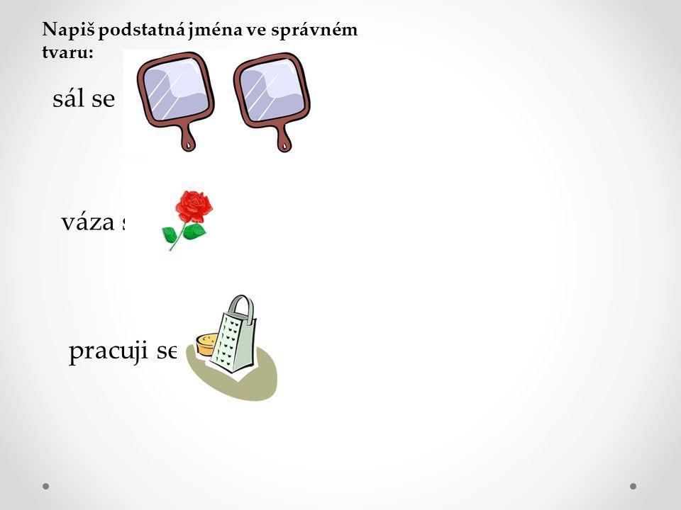 Napiš podstatná jména ve správném tvaru: sál se váza s pracuji se